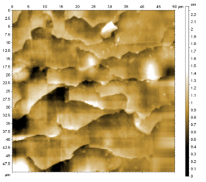 Topography image of a human hair